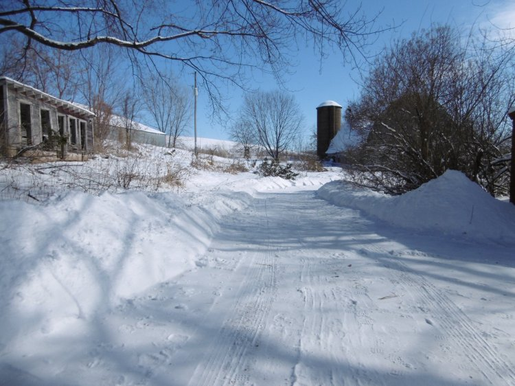 the drive back to the lower barn, shoveled by hand
