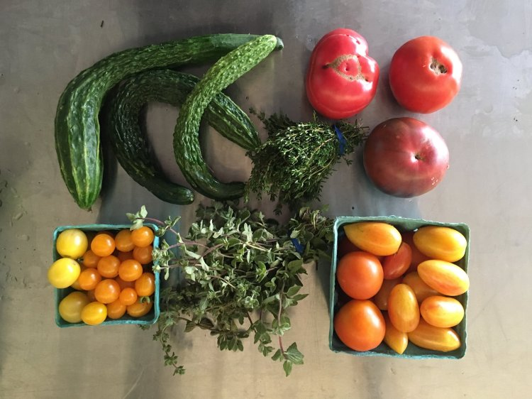 a recent kitchen harvest