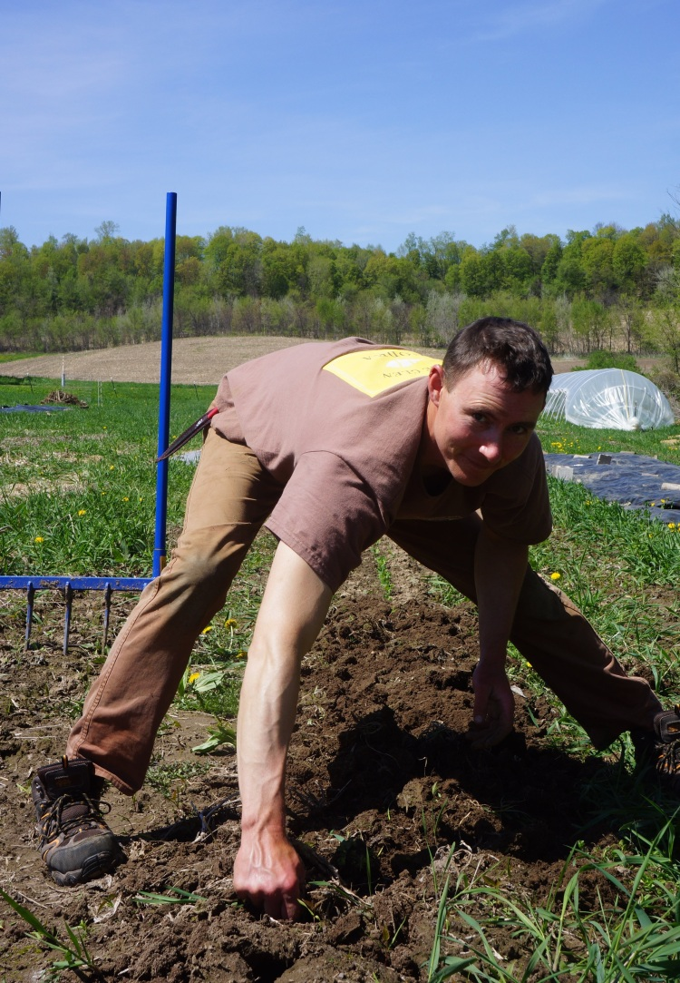 addressing the grass problem with loads of hand weeding
